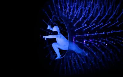 TEATRO ROSSINI 15/02/2019 NIGHT GARDEN di EVOLUTION DANCE THEATER